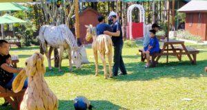 taman rekreasi dan restoran nirwana stable