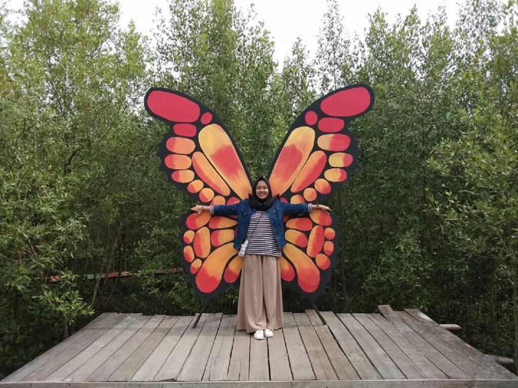 spot foto kupu-kupu warna-warni di dalam area mangrove