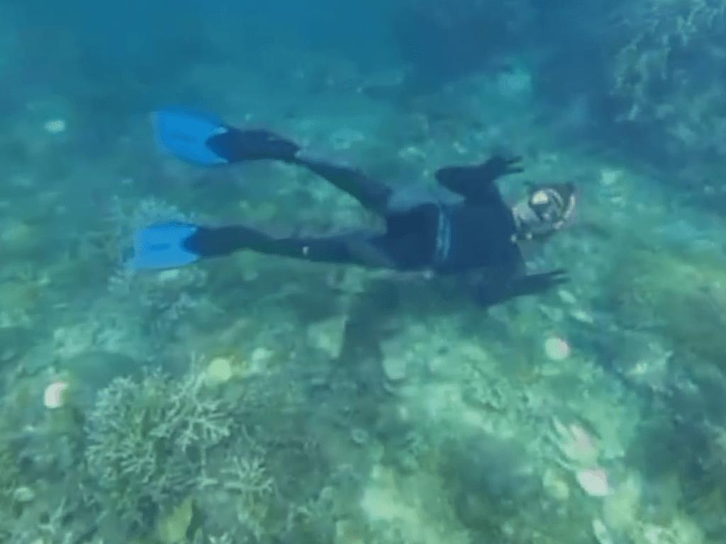Menyelam di bawah laut