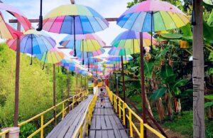 Jembatan kayu warna-warni Taman Wisata Graha Mangrove
