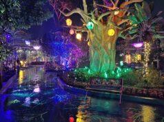 Magicnya Kawasan Forest Magic