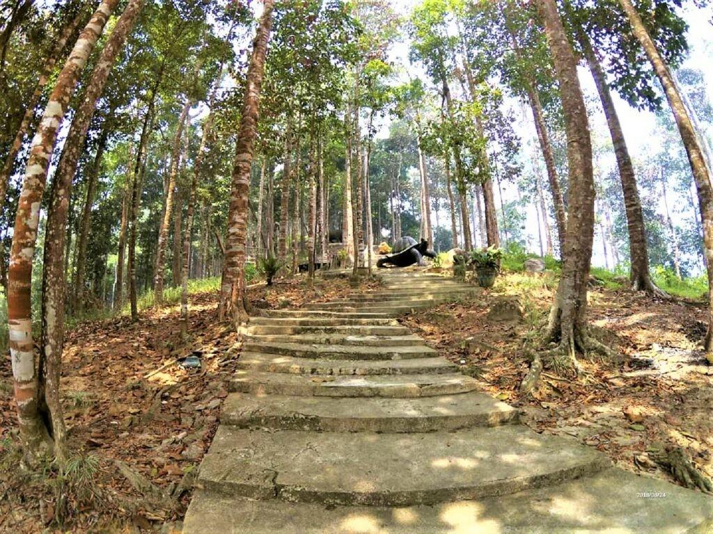 Mendaki jalur trekking menuju puncak Rindu Alam Singkawang