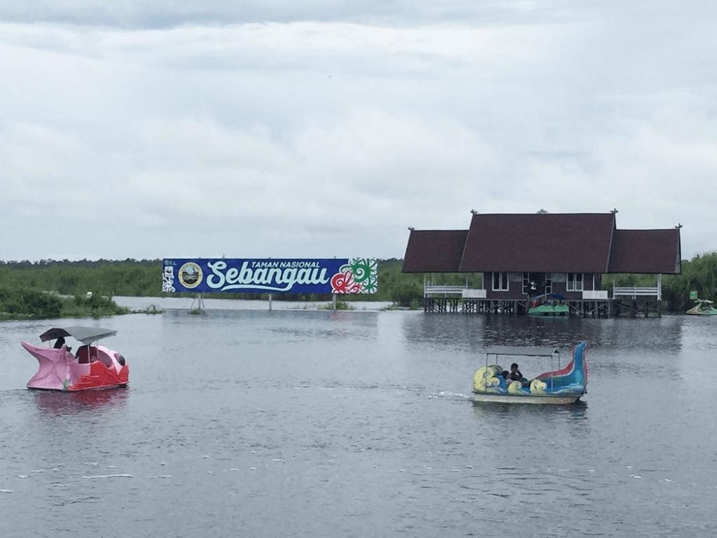 Danau Sebangau di Taman Nasional Sebangau