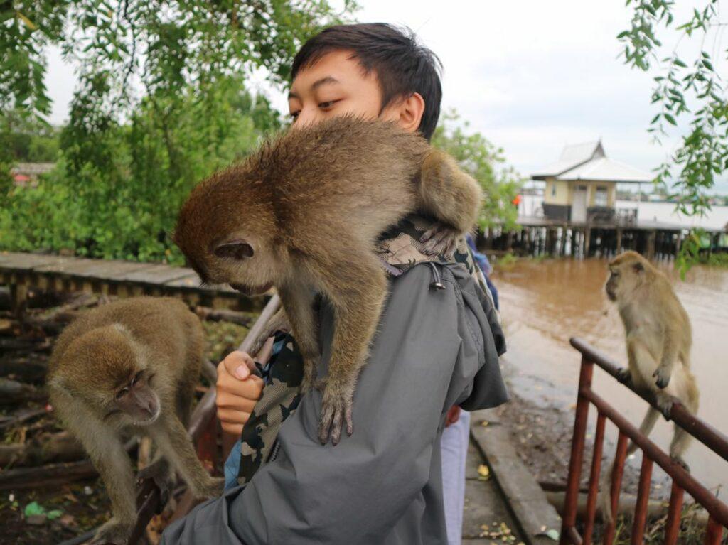Mengambil foto bersama monyet