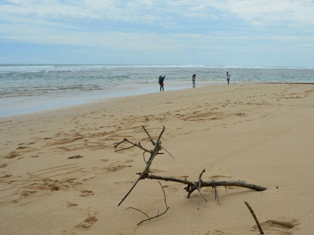 wisatawan bermain di tepi pantai