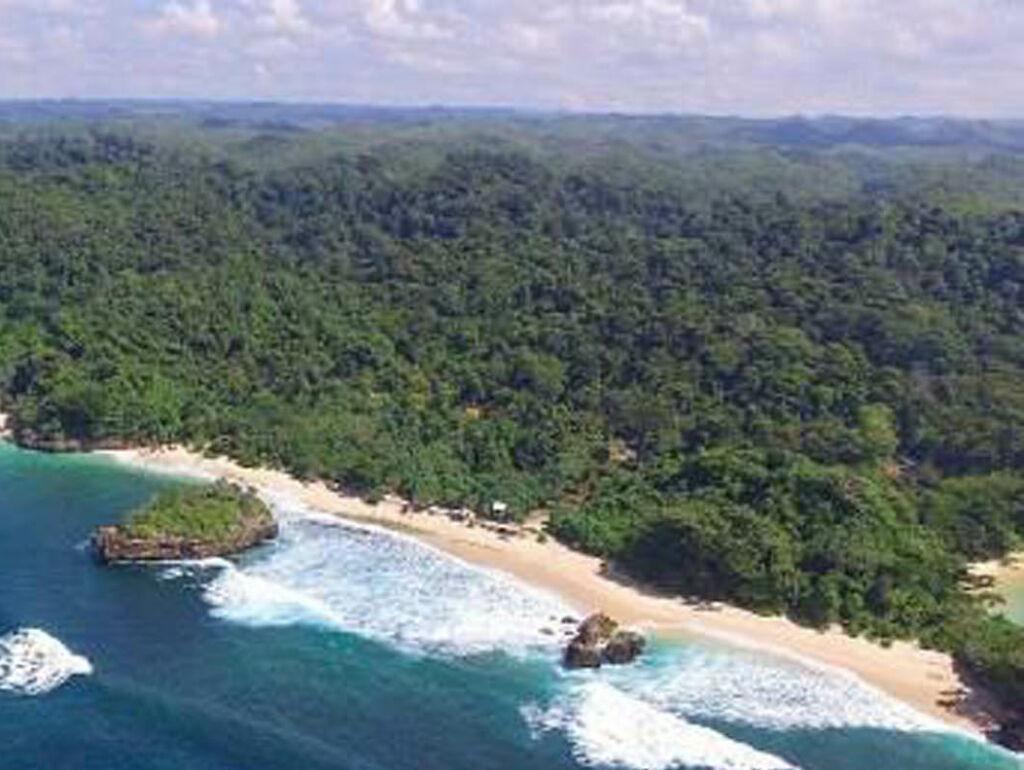 Bentang alam pantai kondang merak dikelilingi pepohonan hijau