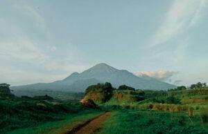 Sabana Ranu Manduro berlatar pegunungan