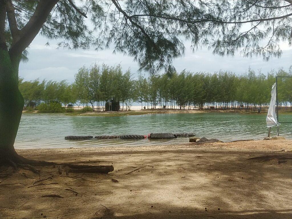 berteduh di bawah pohon cemara sambil melihat indahnya laguna buatan