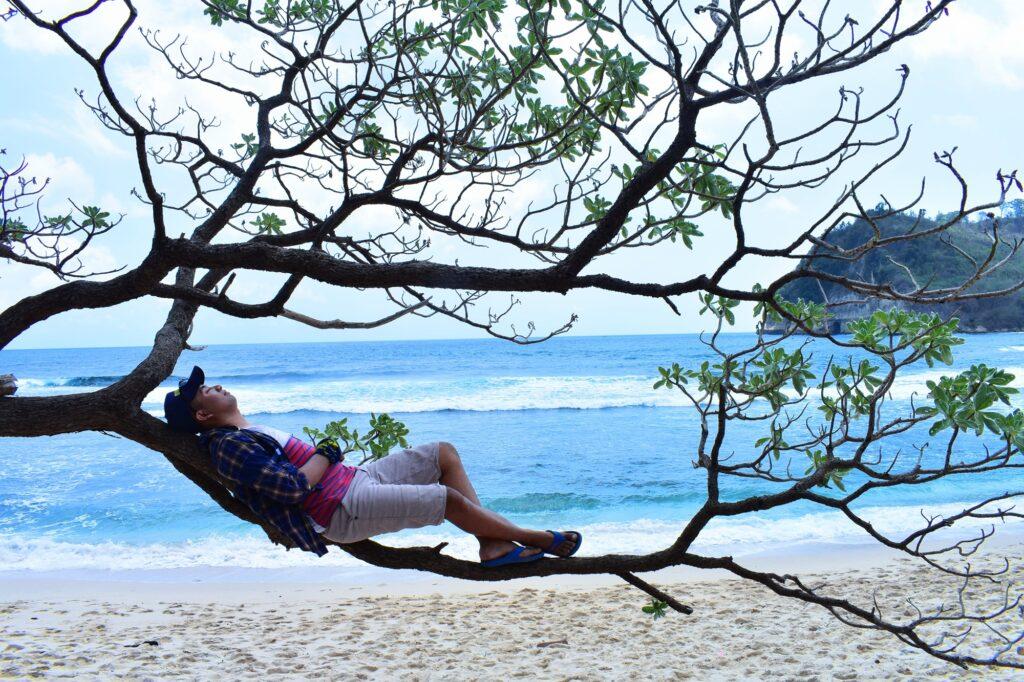 wisatawan menghabiskan waktu dengan bersantai di salah satu cabang pohon akasia