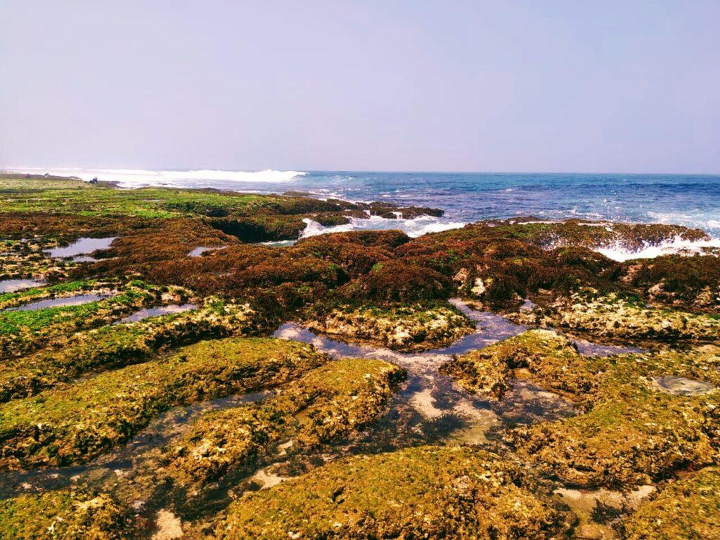 Formasi batu karang di sekitar bibir Pantai Melasti menghadap langsung ke Samudera Hindia
