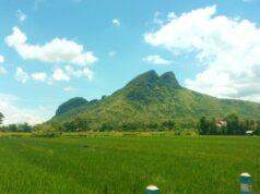 Gunung Budheg dilihat dari area persawahan
