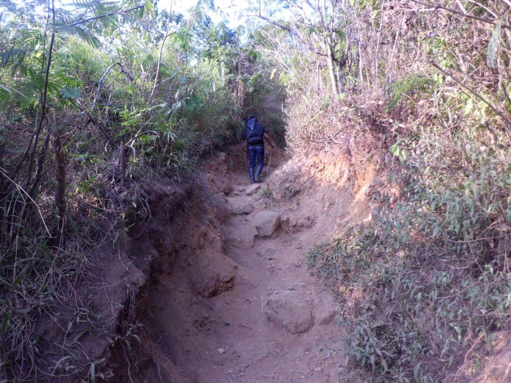 pendaki menyusuri jalur pendakian