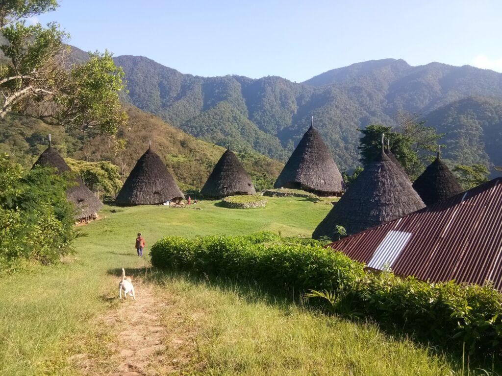 rumah-rumah di Wae Rebo