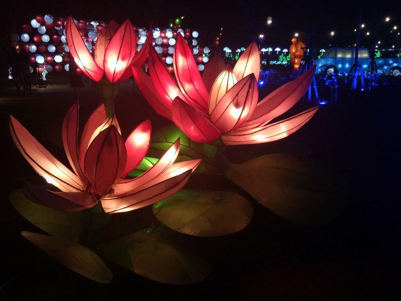 lampion berbentuk bunga yang ada di Kiara Artha Park