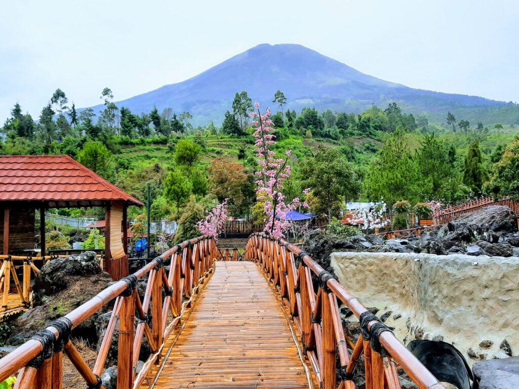 Panorama Gunung Sindoro