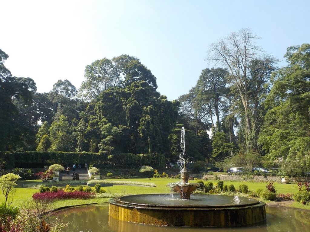 Indahnya taman di Kebun Raya Bogor salah satu pilihan taman terlengkap tempat wisata di Bogor