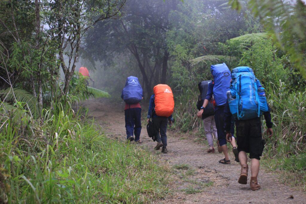 Pendaki berjalan memasuki kawasan hutan Gunung Ciremai