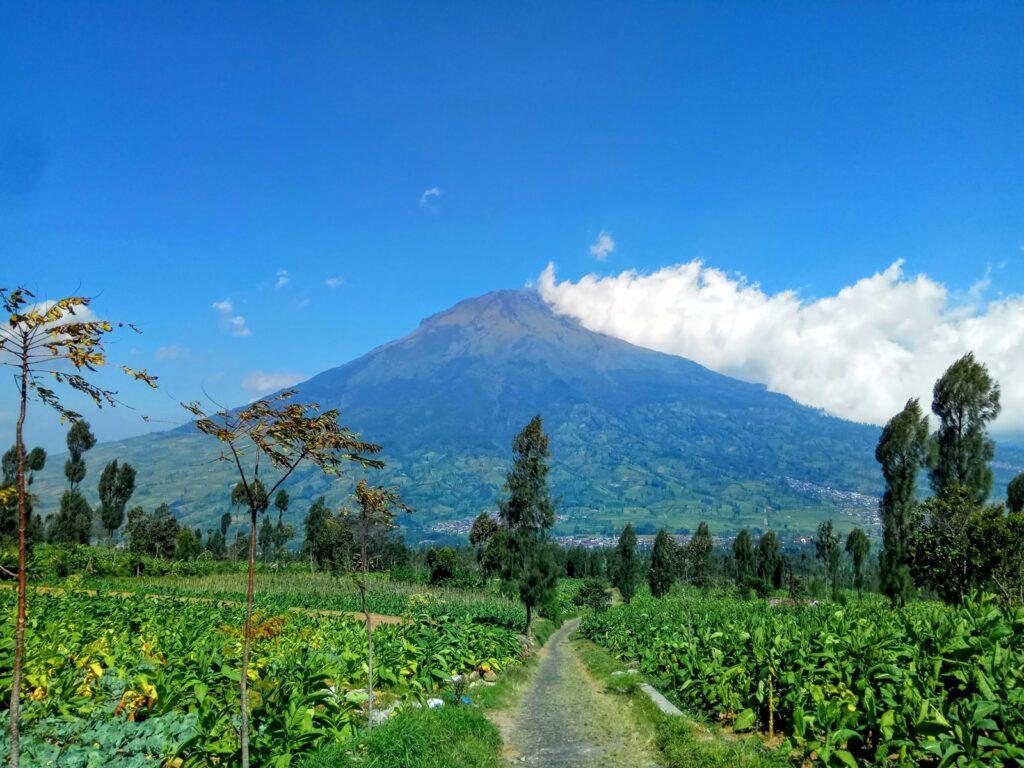 Cantiknya Gunung Sumbing tampak dari jauh