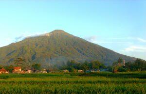 panorama sawah gunung ciremai
