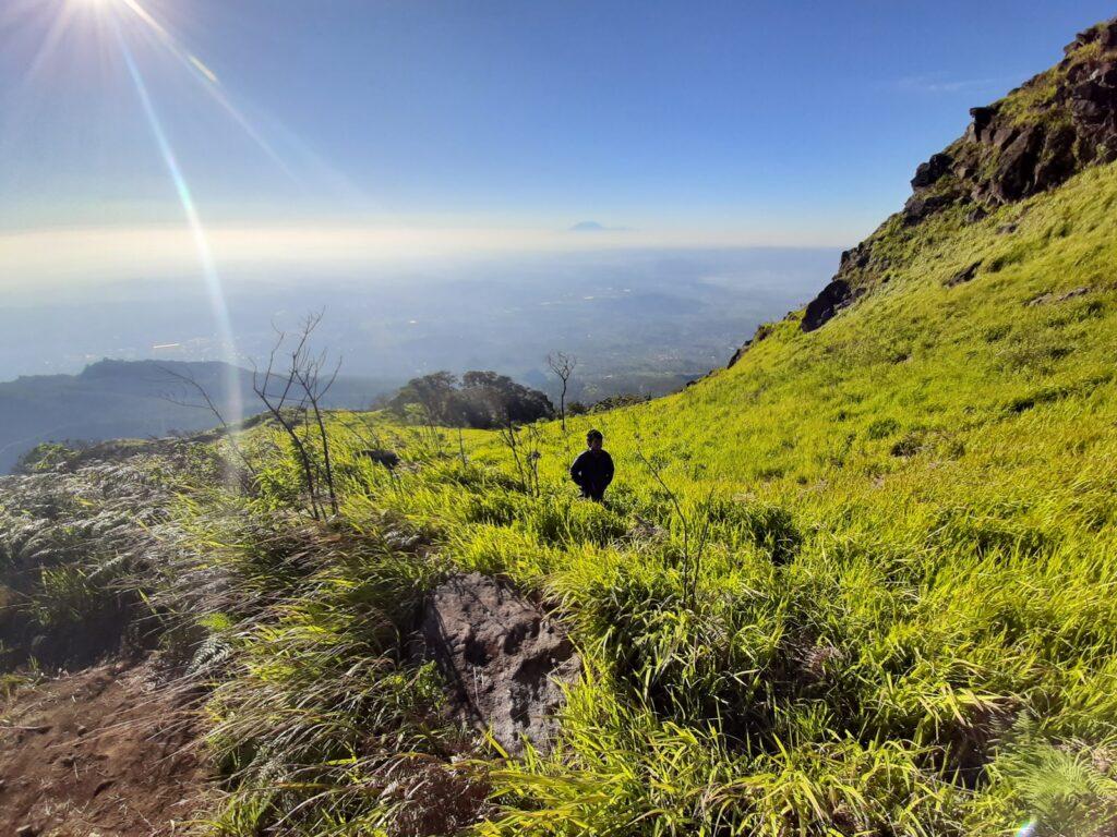 Pendaki melintasi padang rumput dan semak di kawasan puncak Gunung Ungaran