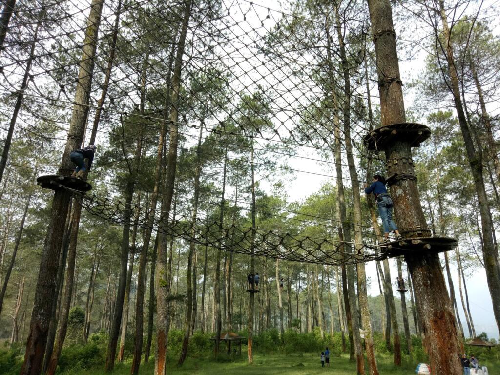 Uji keberanian di Treetop Adventure Park