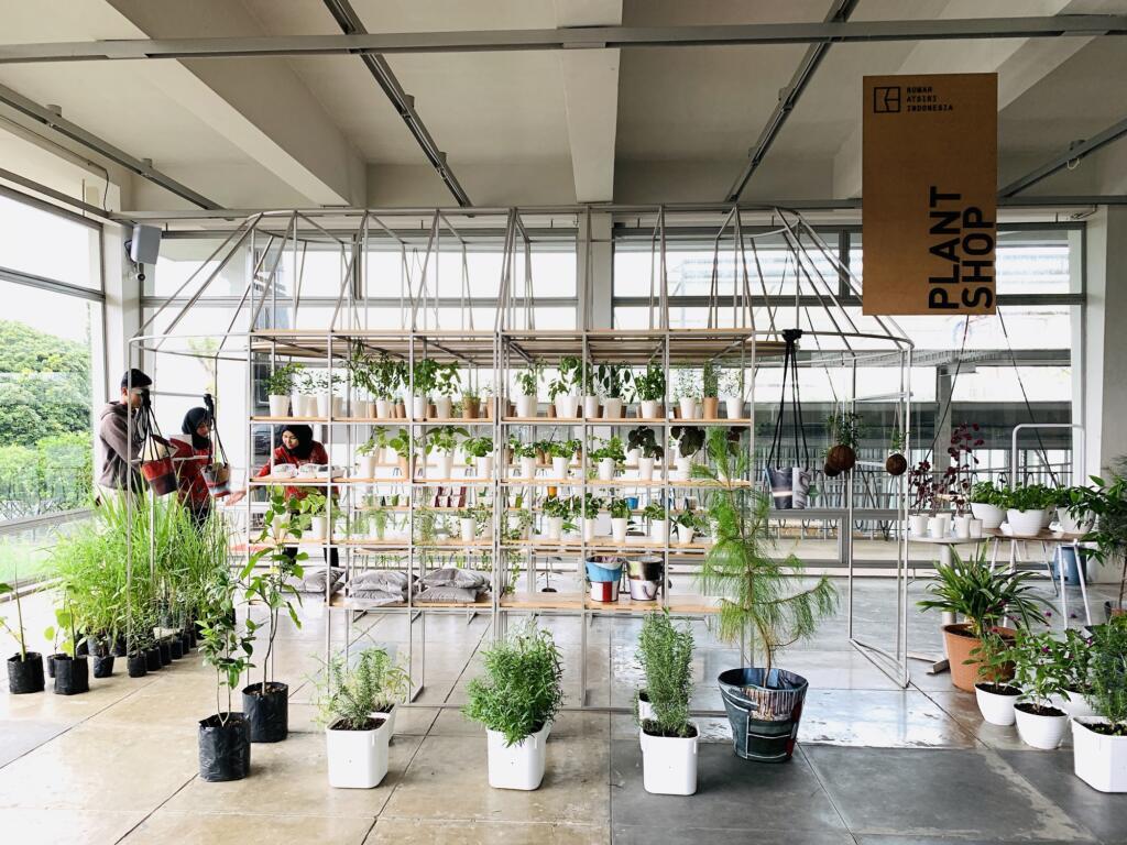 Menjelajah Koleksi hingga Area Greenhouse Rumah Atsiri