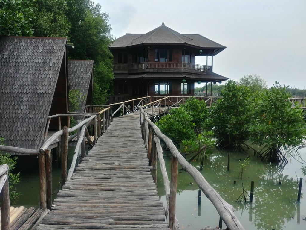 Taman Wisata Mangrove salah satu tempat wisata di jakarta bertemakan alam