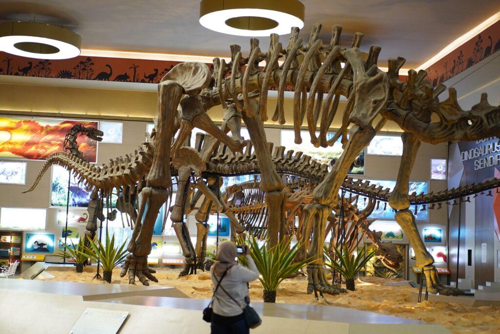 Pengunjung memotret salah satu koleksi fosil