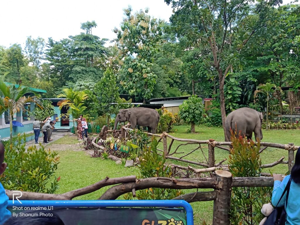 Gembira Loka Zoo Tempat wisata di Jogja yang populer di kalangan masyarakat