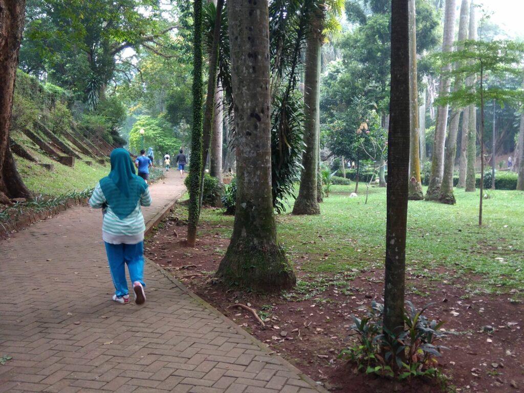 Jogging Track yang terlindung rimbunnya pepohonan