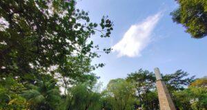 Plasa di Taman langsat