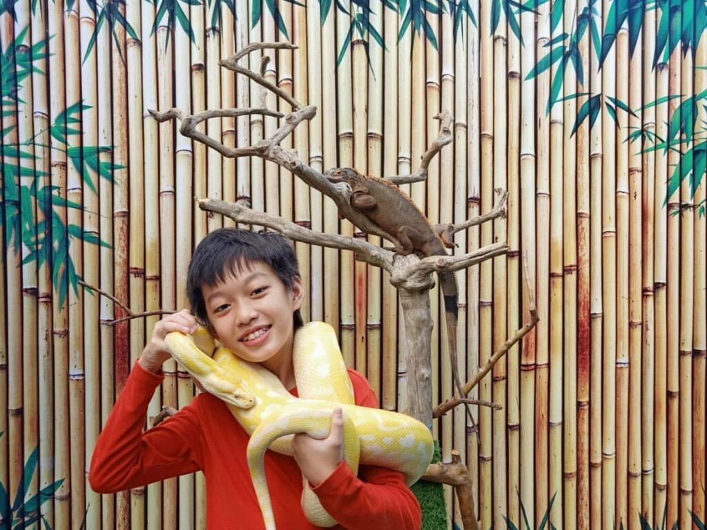 Bermain dengan satwa ular dan iguana