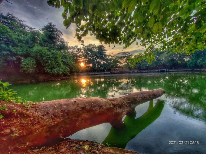 Matahari terbenam di balik pepohonan Hutan Kota Srengseng