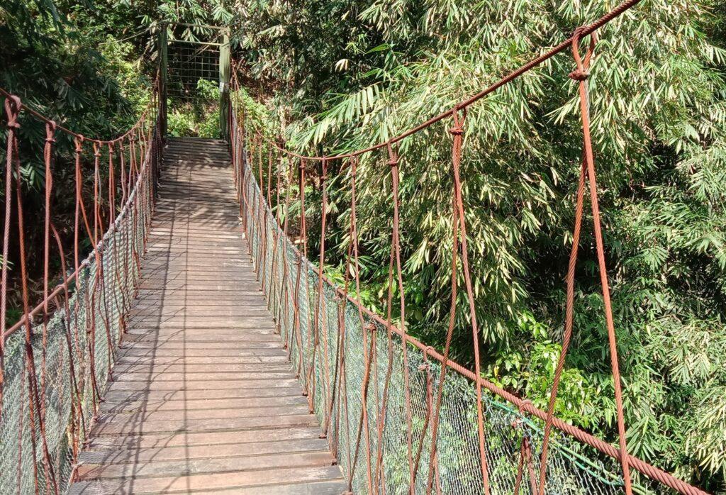 Spot foto bernuansa alam bebas di Jembatan Goyang