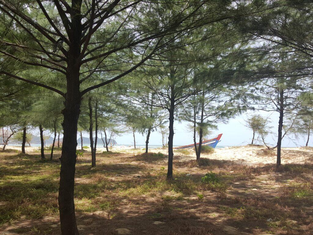 Pemandangan laut dari area hutan pinus Pulau Kapuk