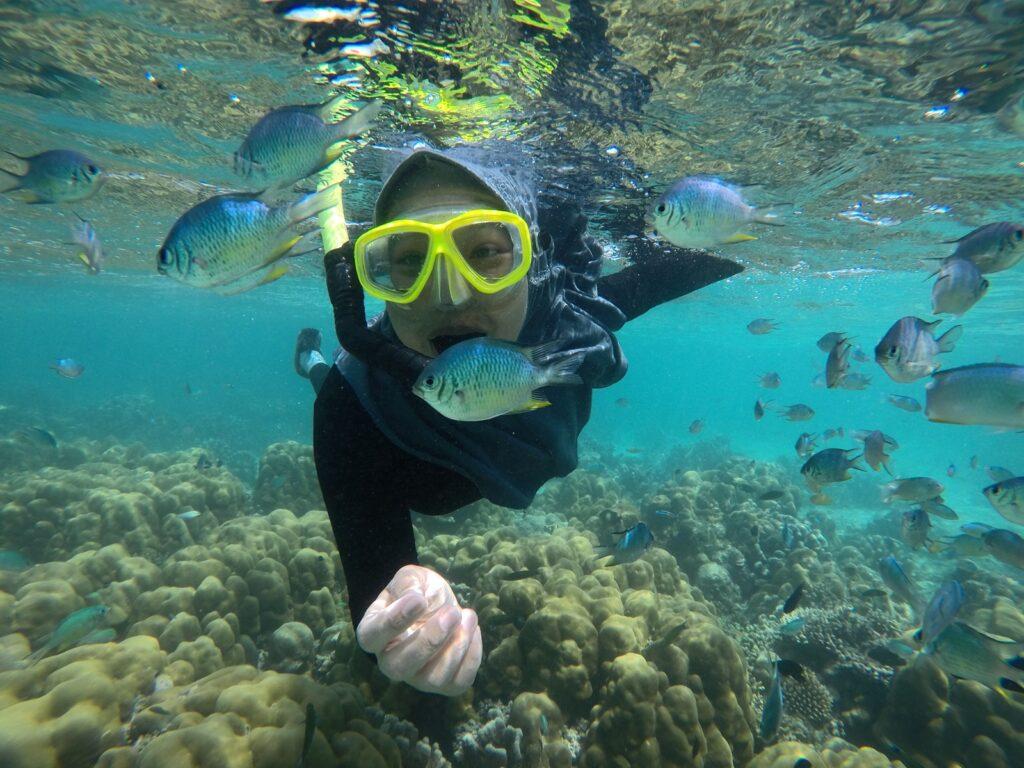 Wisatawan menikmati snorkeling