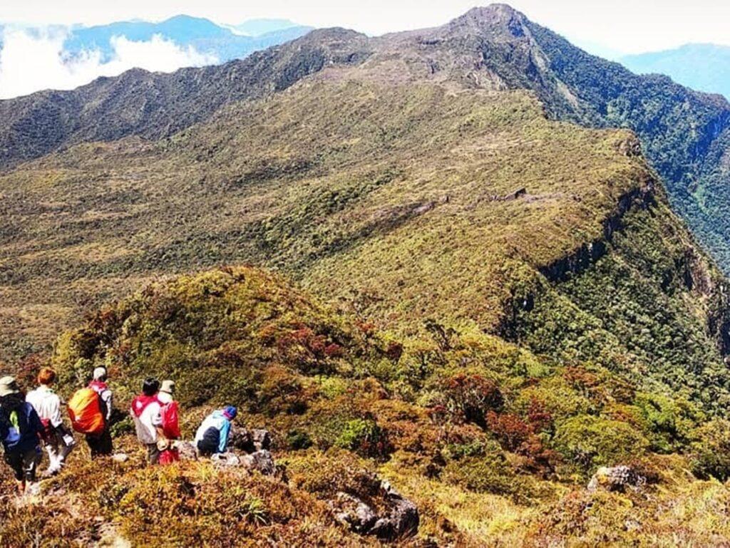 Kawasan puncak Gunung Leuser