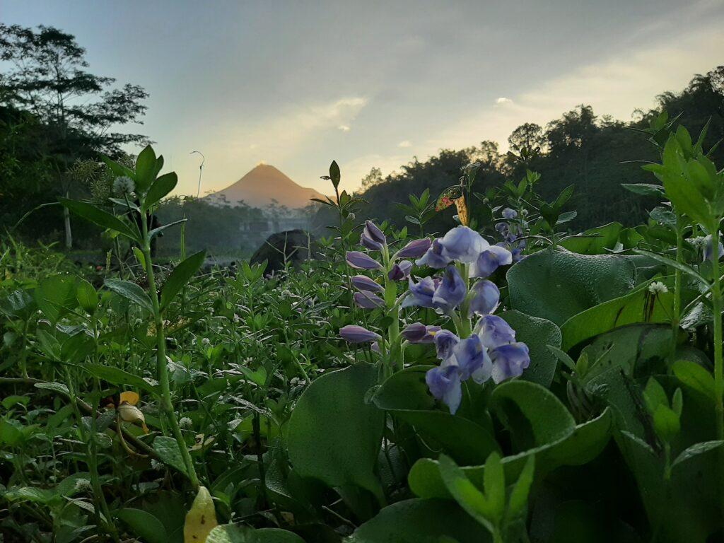 Siluet Gunung Merapi yang Agung