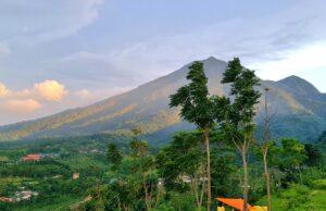 Hijaunya kawasan pegunungan gunung bunder bogor