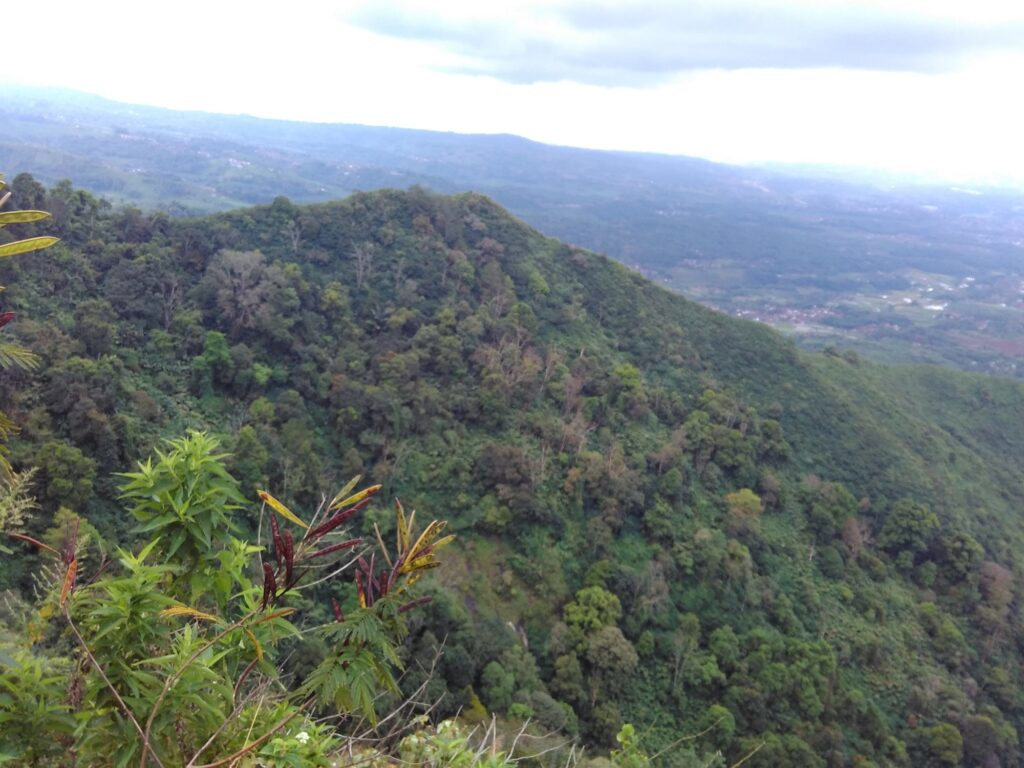 Pemandangan dari Puncak Gunung