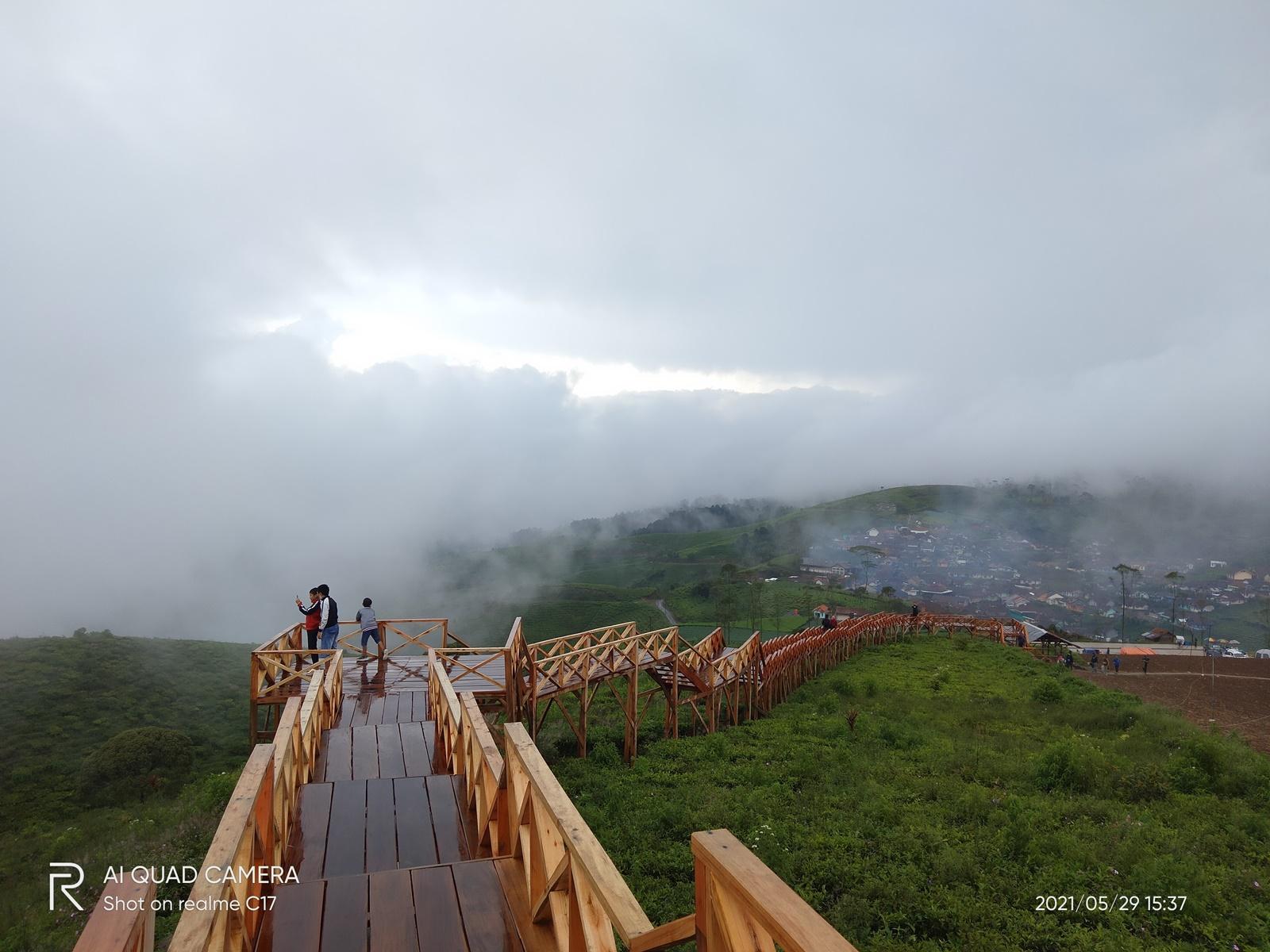 Jembatan kayu di atas kebun teh