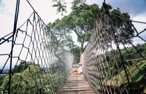 Foto di atas jembatan gantung