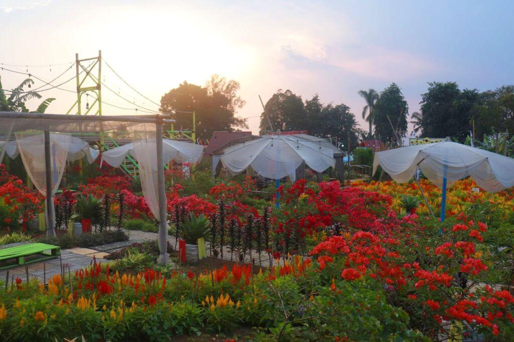 Area duduk dikelilingi taman bunga