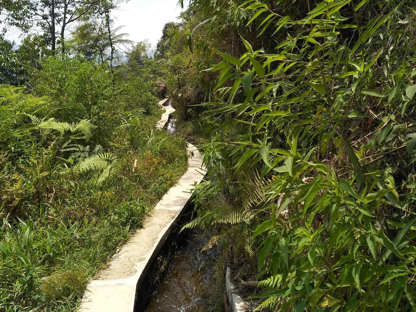 Jalur irigasi