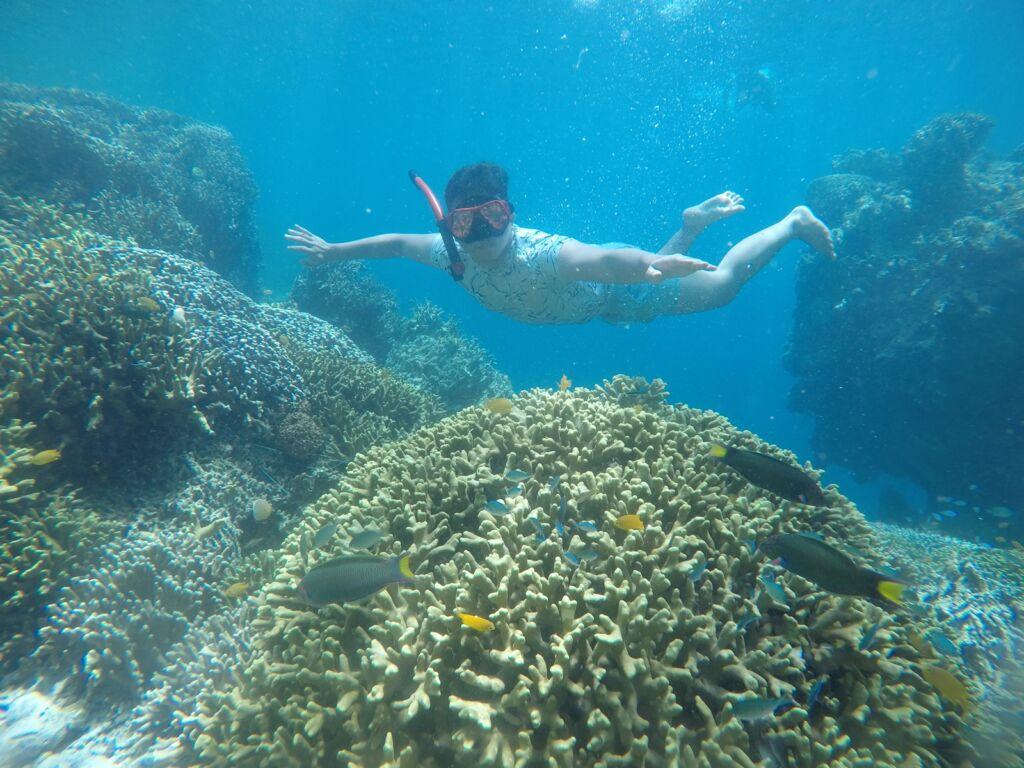 WIsatawan berfoto di antara terumbu karang