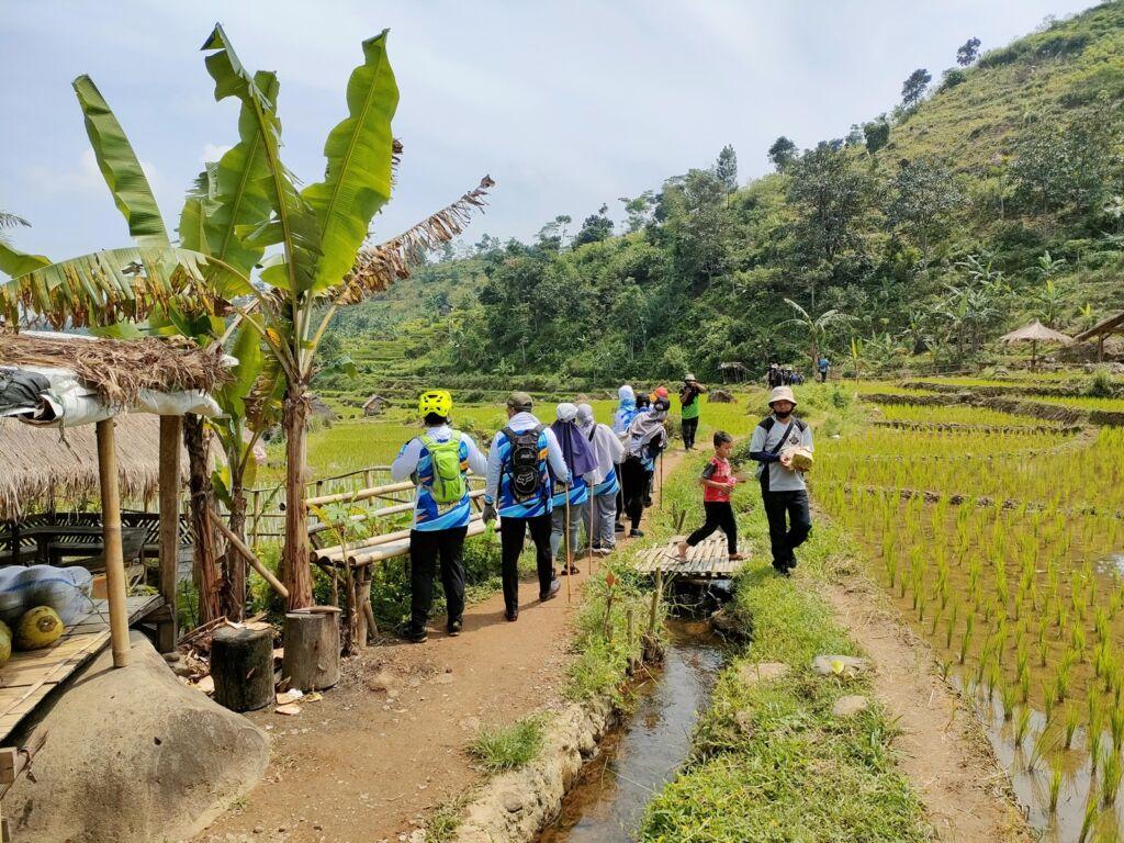 trekking Menyusuri sawah menuju curug leuwi asih