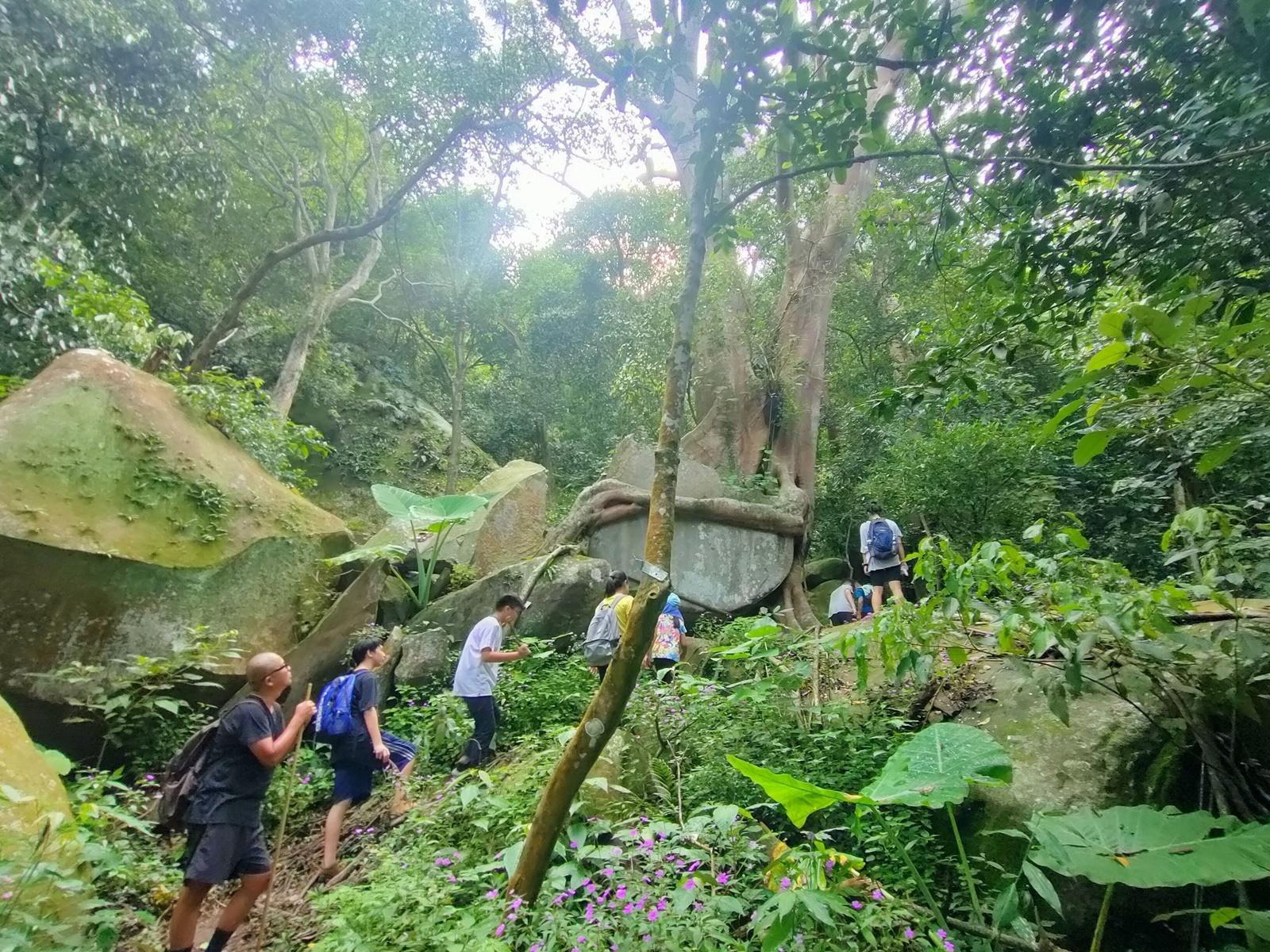 Mendaki di antara hutan dan bebatuan