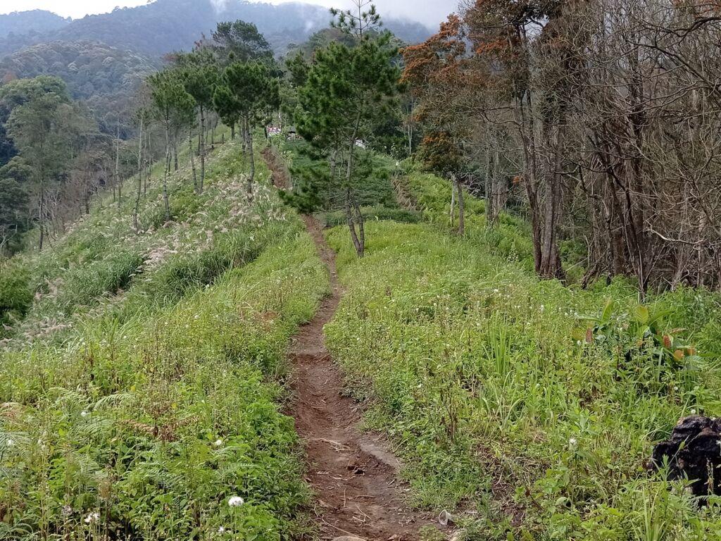 jalur tajur berupa jalan setapak di punggung bukit